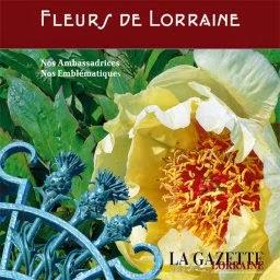 http://www.gazette-lorraine.com/hors-series.php?choix=fiche&id_post=383