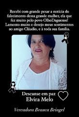 VEREADORA ELEITA BRANCA BRINGEL