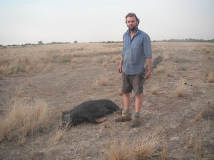 Al with feral pig