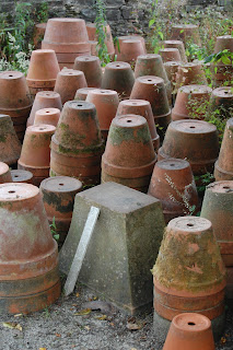 Wonderful pots can make a garden.