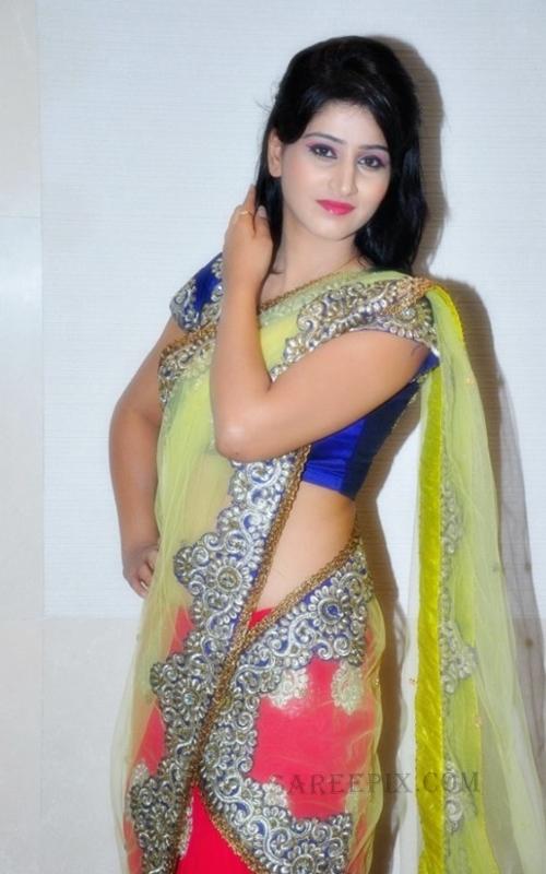 Shamili agarwal in saree at Desire exhibition and Sale 2013 in Hyderabad