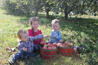 http://www.sparrowsathome.com/2015/11/apple-picking-in-flat-rock-nc.html