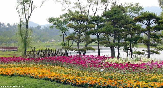 Flores en la Expo de Jardines de la Bahía Suncheonman