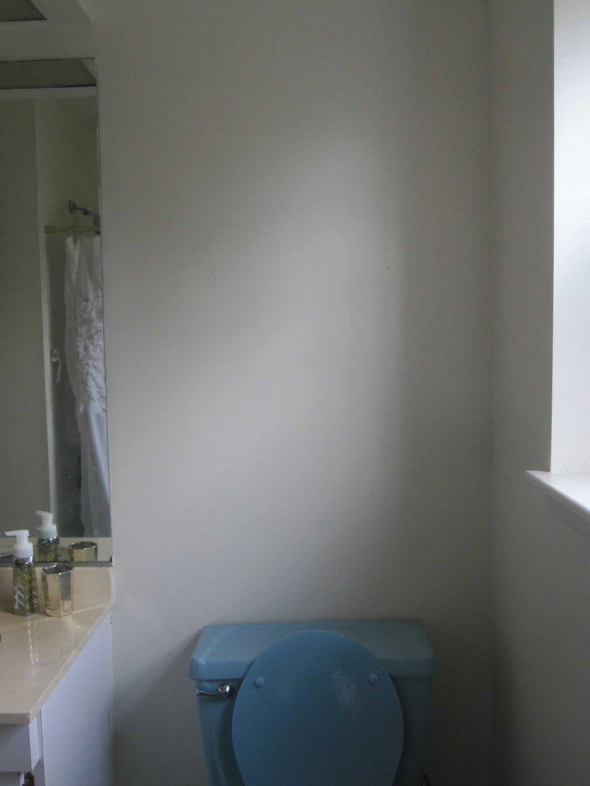 Sar and kels kelsey bathroom redo for Bathroom noise cancellation