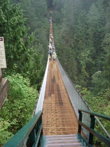 Forest Gulp: Capilano Suspension Bridge, North Vancouver, British Columbia