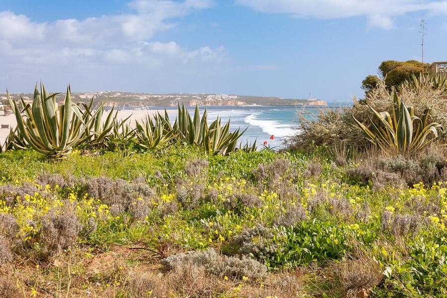 Sejur Portugalia. Costa Algarve