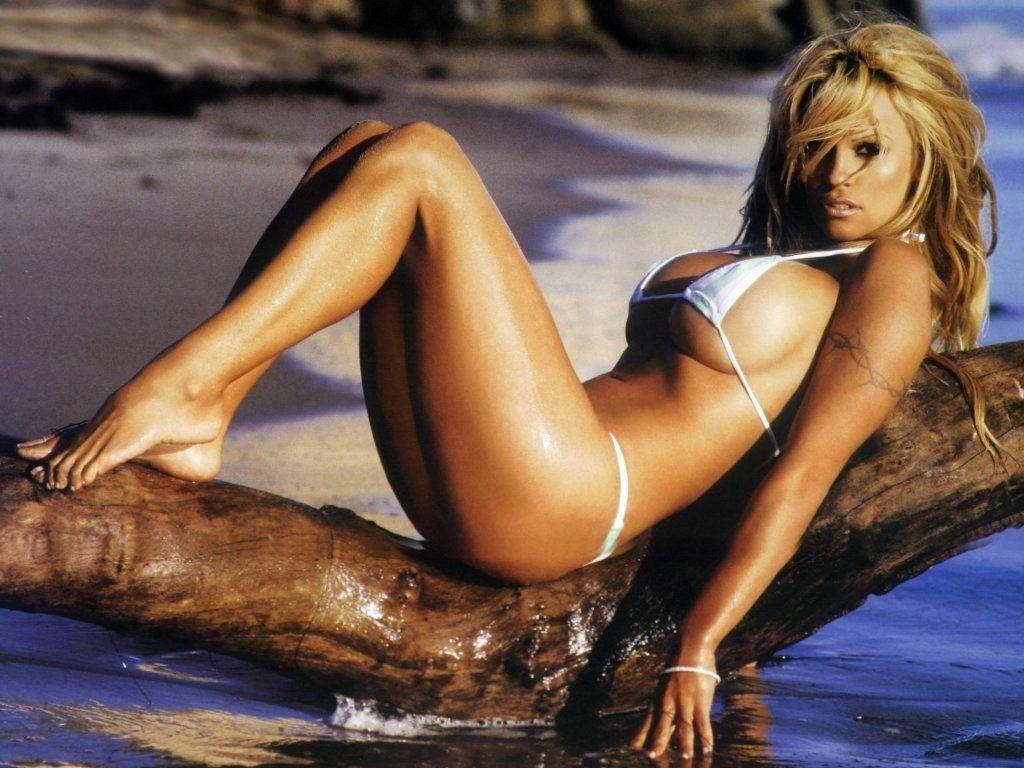 Pamela Anderson lució su figura en Hawaii a los 44 años +y