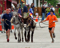 Pack Burro Days 2013