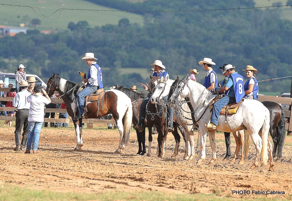 Blog de Fotos: 1� Prova de Marcha Amadora de Muares e Equinos (15-04)