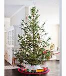 Joulupuu on rakennettu.....