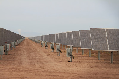 Solar Panels Sprouting in the Desert