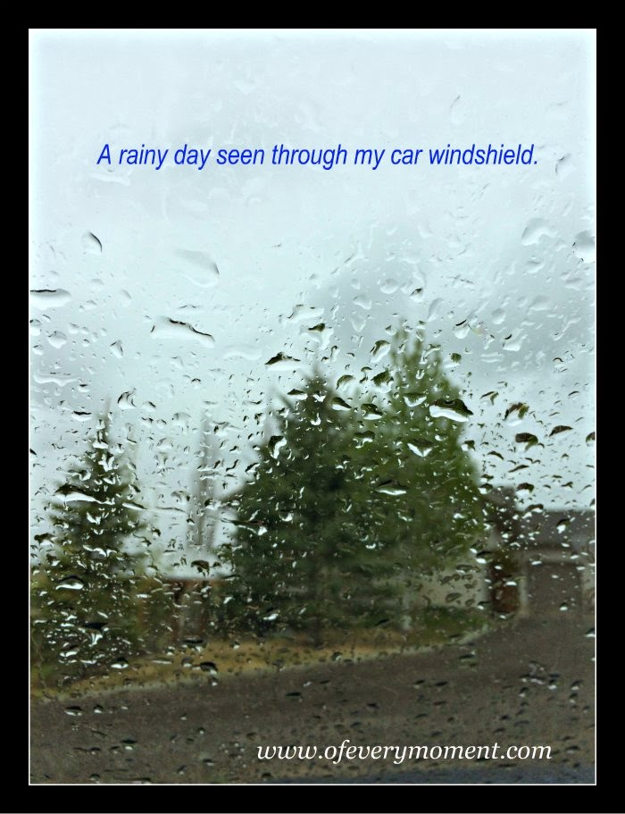 rain, windshield