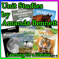 Looking for Unit Studies?