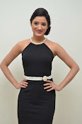 Richa panai at Memu Audio function-thumbnail-8