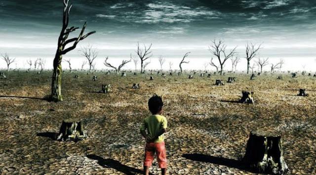 Menteri LHK : Perubahan Iklim Mulai Menunjukkan Gejala Nyata