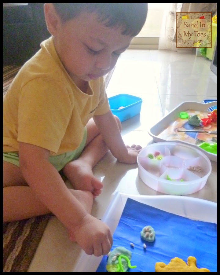 Occupied in play dough activity