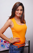 Actress Shilpi Sharma Hot Photo shoot-thumbnail-3