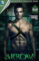 Arrow #22