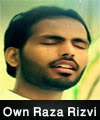 http://www.humaliwalayazadar.com/2015/04/own-raza-rizvi-nohay-2013-to-2016.html
