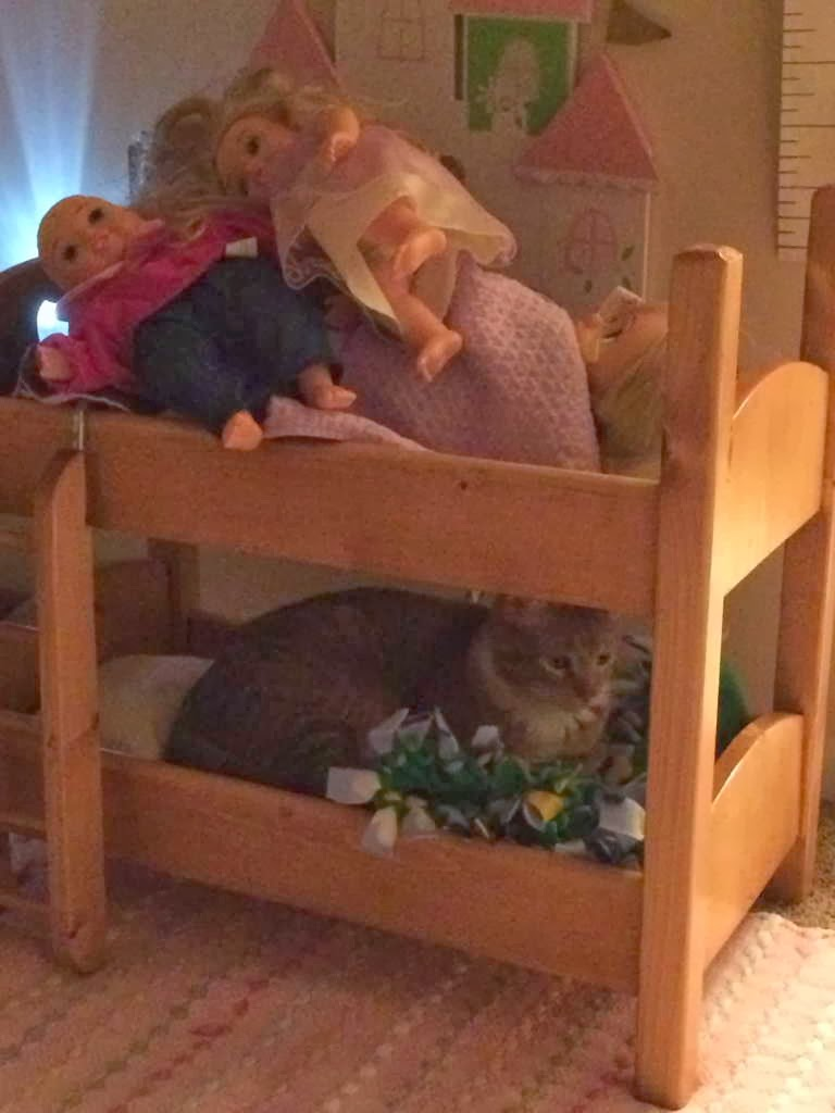 Funny cats - part 86 (40 pics + 10 gifs), cat sits on doll bed