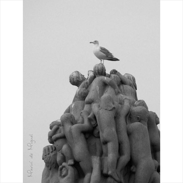 Gaviota en lo alto del monolito del Parque de Vigeland