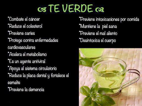 Frases decoracion y algo mas beneficios del t verde for Te verde beneficios para la salud