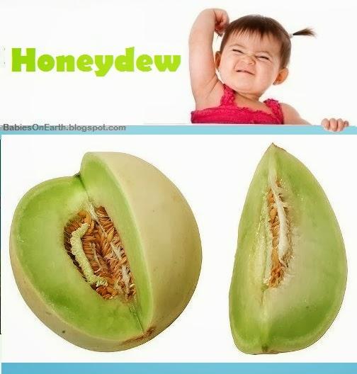 Baby Honeydew