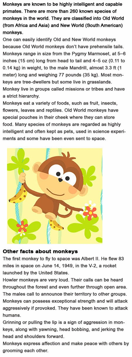 Monkey Facts for kids