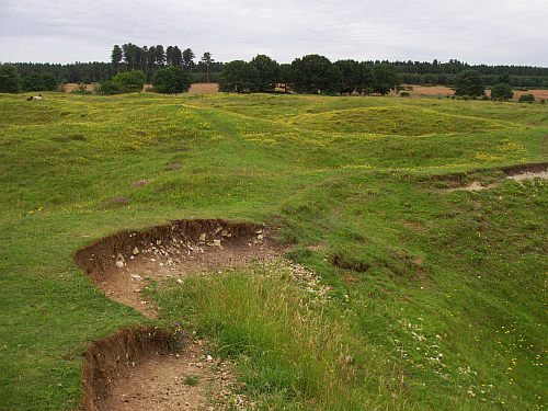 Grimes Graves landscape © Tim Holt-Wilson 2012