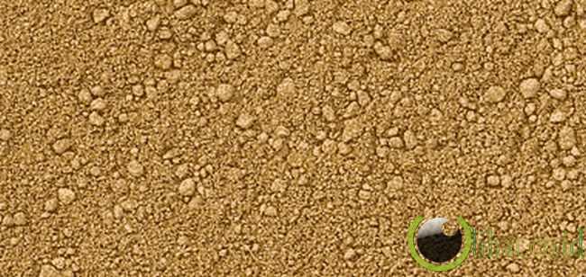 Tanah Pasir