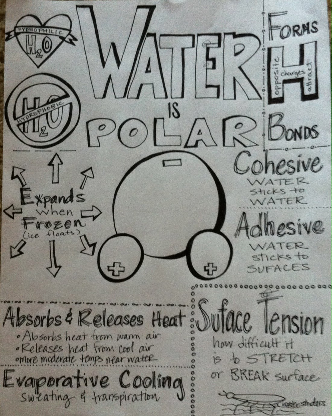 chemistry water summary This tutorial introduces basics of matter other sections include elements, the periodic the liquid state is colder and denser (less energy), but the molecules are the same water (h 2 o) is another example a water molecule is made up see the full list of chemistry topics at the.