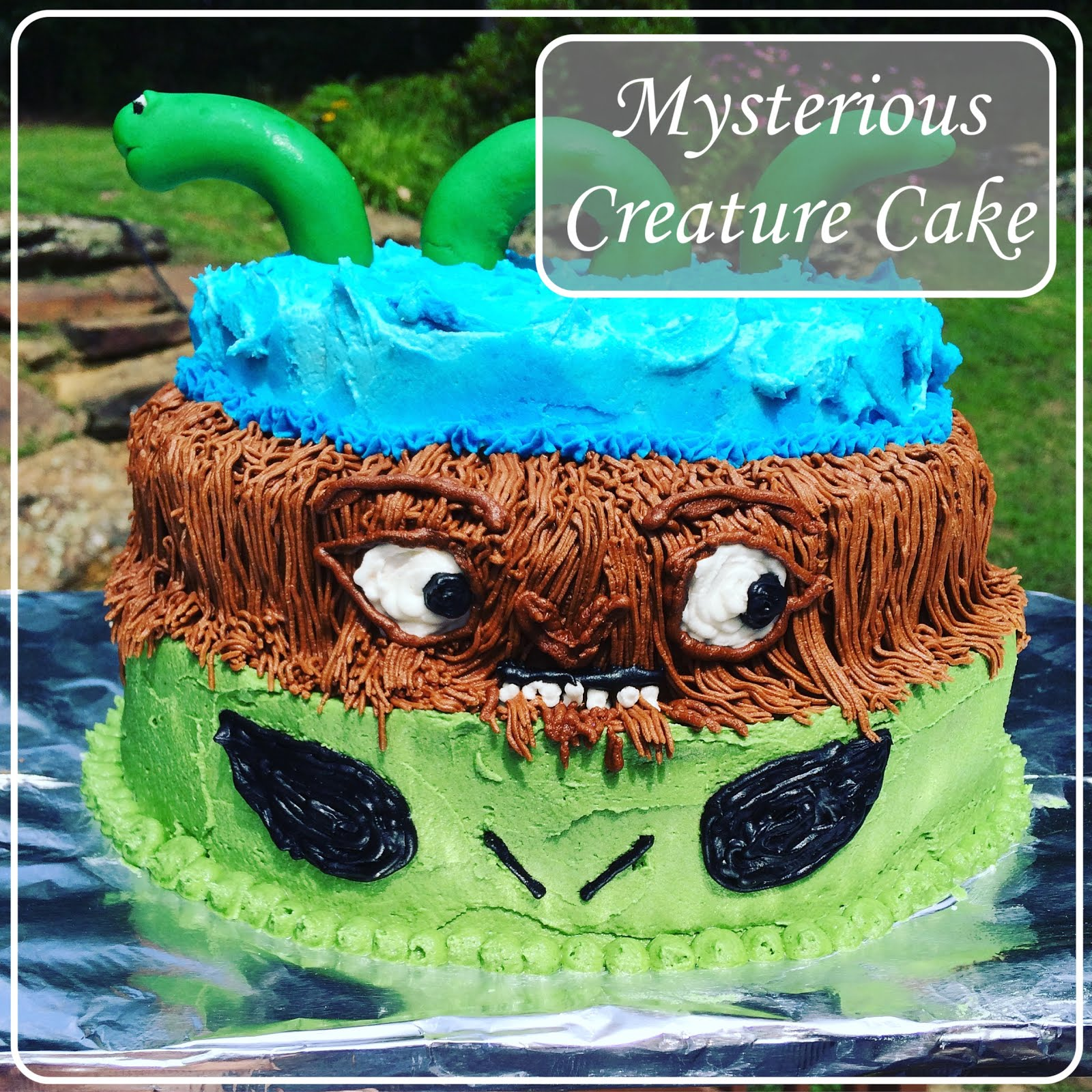 Home Cooked Handmade Mysterious Creatures Birthday Cake