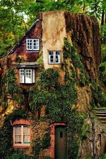 บ้านธรรมชาติ