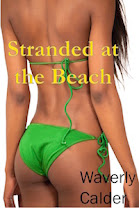 <i>Stranded at the Beach</i><br>By Waverly Calder