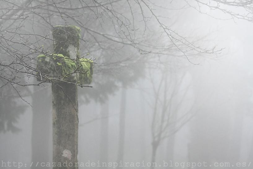 http://cazadoradeinspiracion.blogspot.com.es/2013/05/welcome-spring-con-alvaro-sanz-welcome.html
