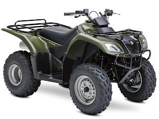 2013 Suzuki Ozark 250 ATV pictures 2