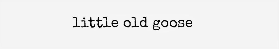 Little Old Goose