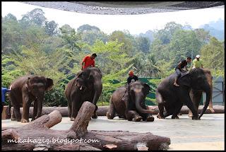 kuala lumpur elephants