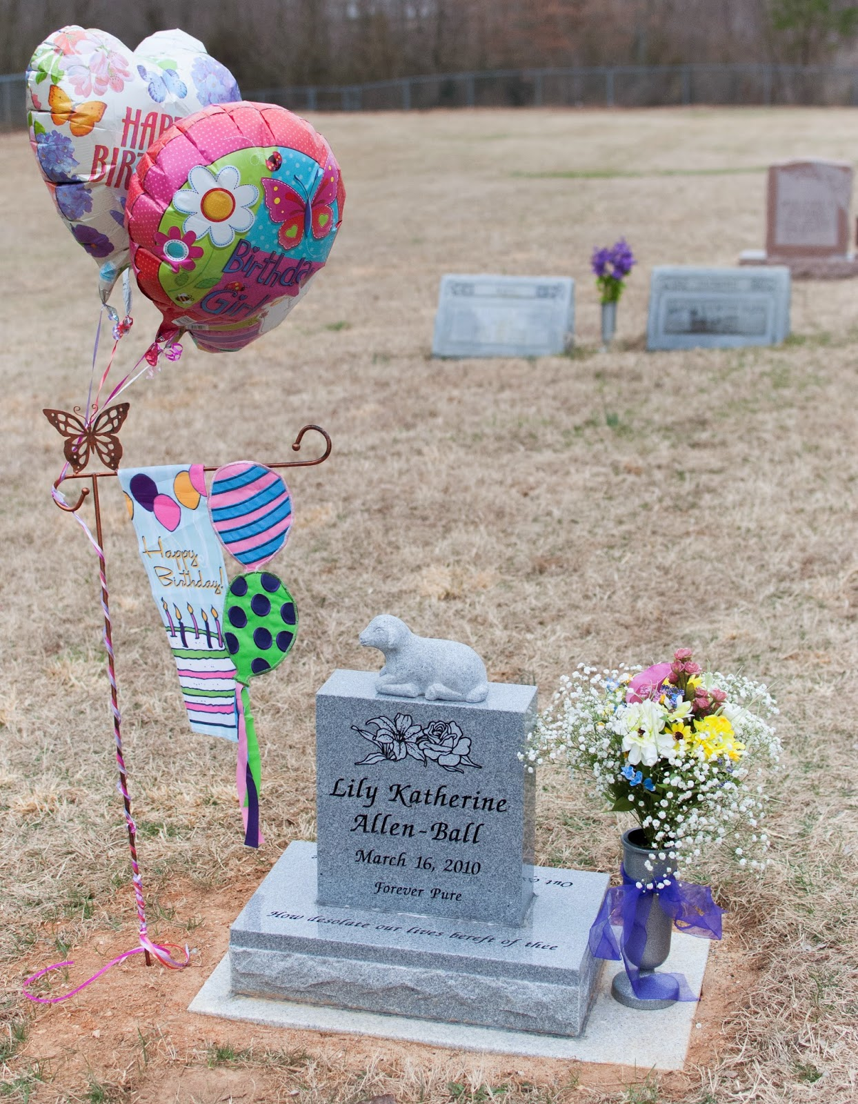 Rose and her lily lilys 4th birthday celebration the four balloons that i got all looked so pretty together the balloon on top left in picture below says birthday girl and has flowers and a butterfly izmirmasajfo