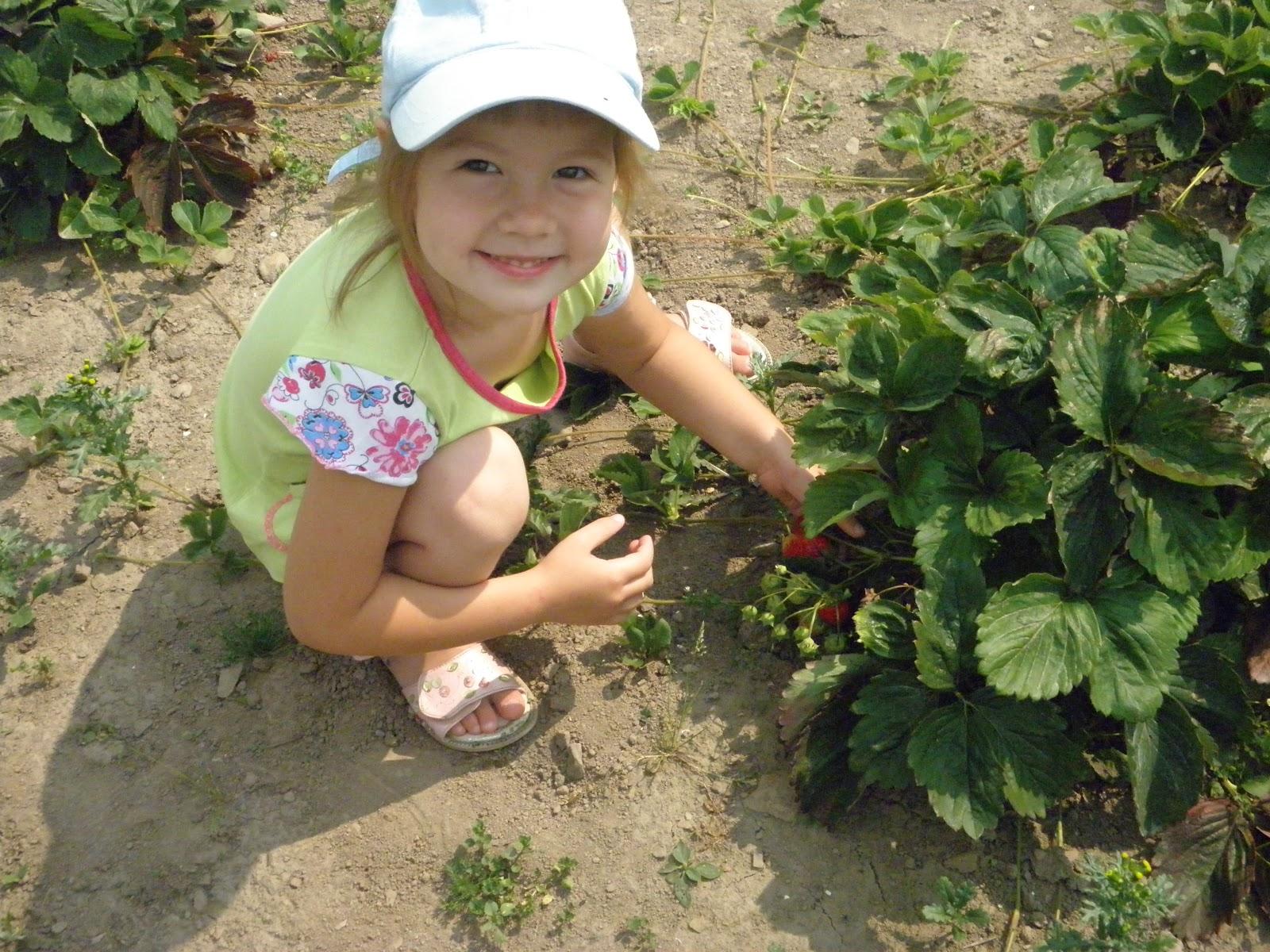 Фото дети с земляникой