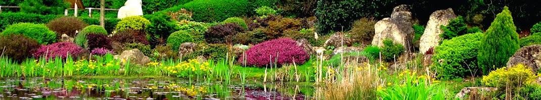 Záhrada, záhrady, záhradné altánky, záhradný nábytok, vertikálne záhrady, vodné záhrady