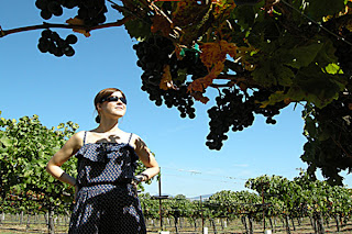 winecountry_tourism_outlook