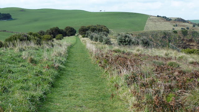 track on george bass coastal walk