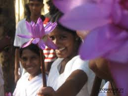 a sri lankan girl in school uniform holding blue water lily