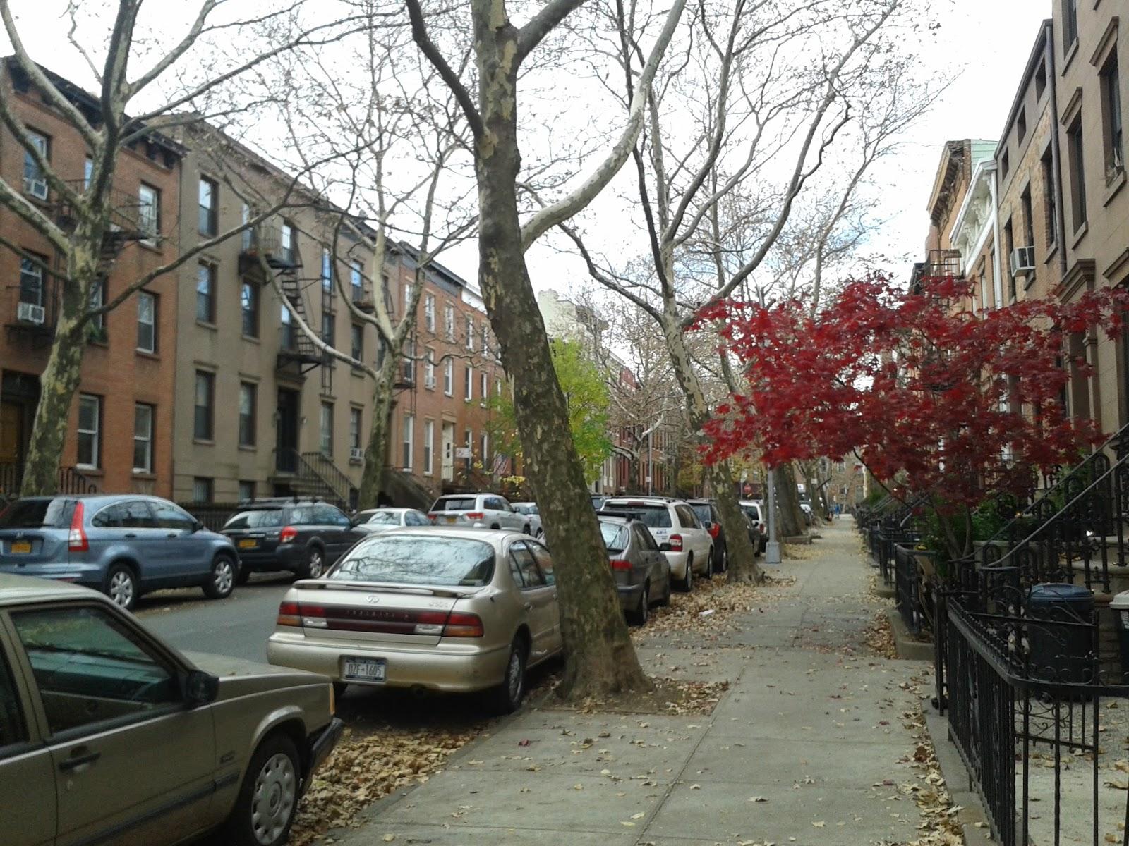Provence en boite,un petit coin de Provence…à Brooklyn