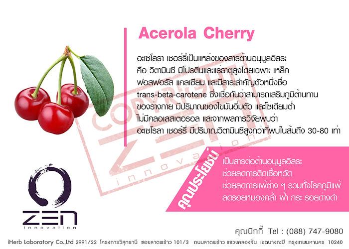 Acerola Cherry สารสกัดผลิตอาหารเสริม นำเข้าจาก Zen Innovation