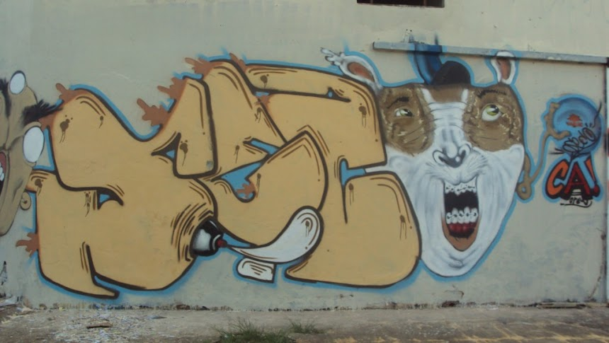 Seco Graffiti DF