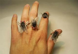 سبب تجمع الذباب على شخص على الرغم من انه نظيف