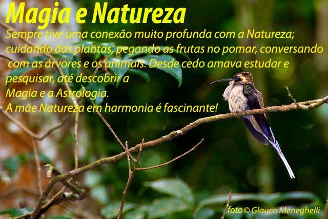 Magia e Natureza