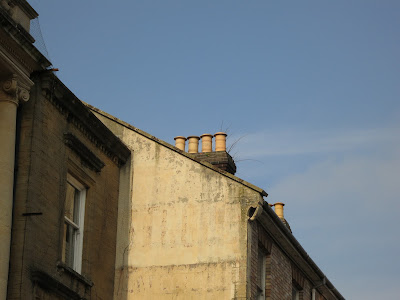 Chimneys cropped from the street picture showing there are twigs behind them.